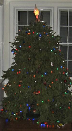 2016christmastree01